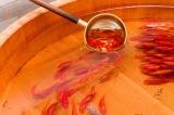 Pintura 3d: Goldfish